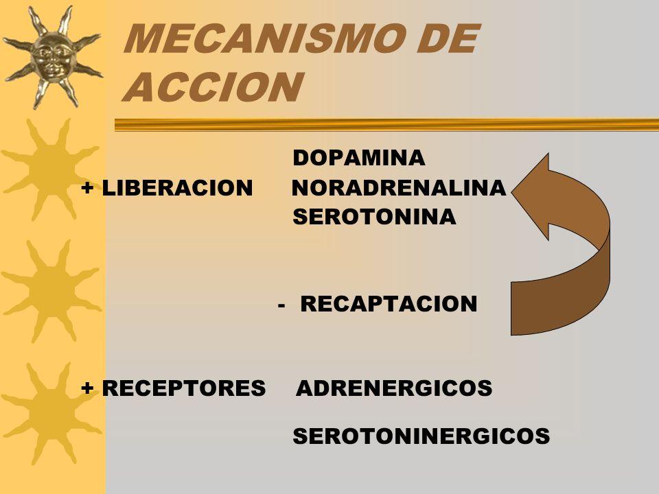 MECANISMO DE ACCION DOPAMINA + LIBERACION NORADRENALINA SEROTONINA - RECAPTACION + RECEPTORES ADRENERGICOS SEROTONINERGICOS