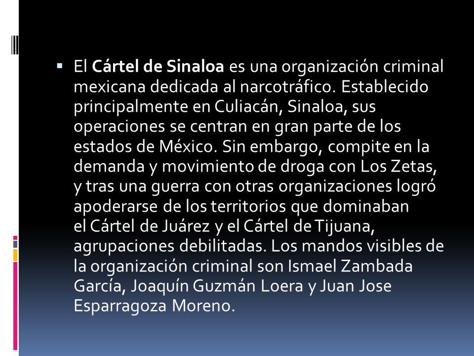 Antecedentes Pedro Avilés Pérez fue un traficante de droga pionero en el estado de Sinaloa a finales de 1960.