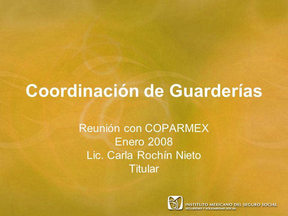 Coordinación de Guarderías Reunión con COPARMEX Enero 2008 Lic. Carla Rochín Nieto Titular