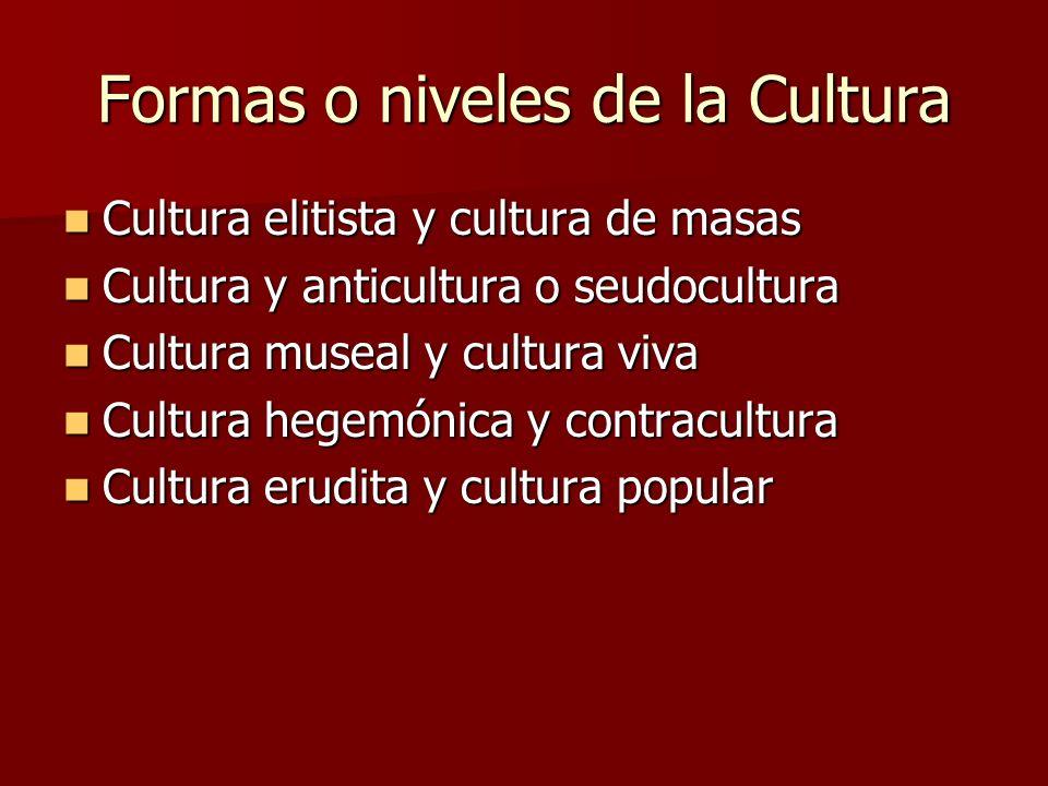 Formas o niveles de la Cultura Cultura elitista y cultura de masas Cultura elitista y cultura de masas Cultura y anticultura o seudocultura Cultura y