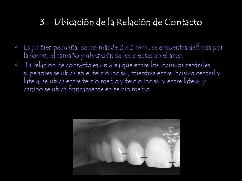 3.- Ubicación de la Relación de Contacto Es un área pequeña, de no más de 2 x 2 mm., se encuentra definida por la forma, el tamaño y ubicación de los dientes en el arco.