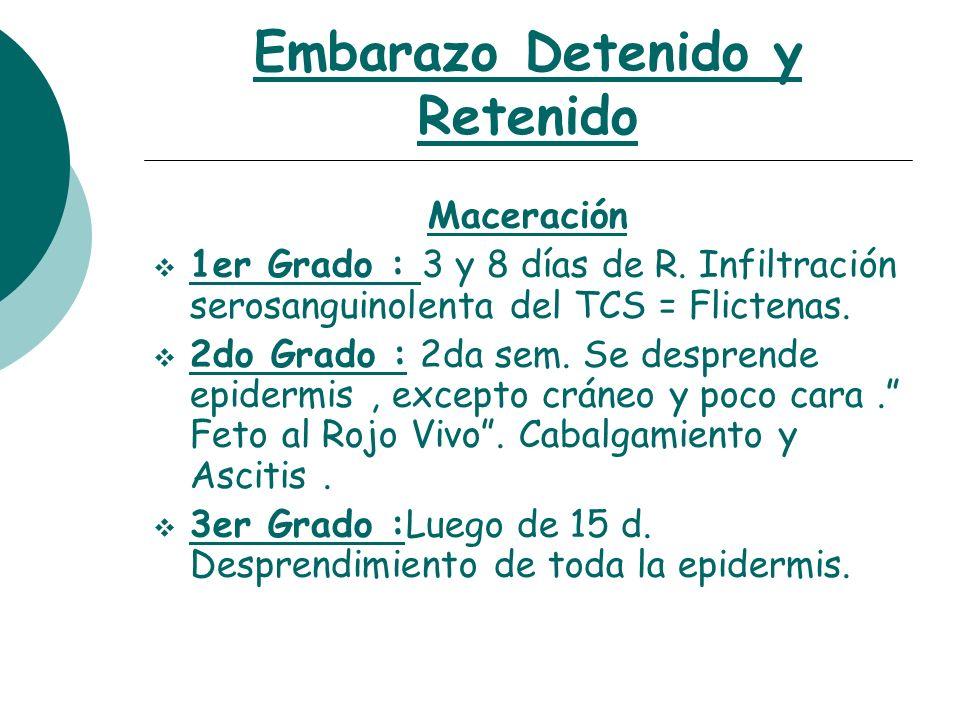 Embarazo Detenido y Retenido Diagnóstico H.M.R : Sospecha : signos y síntomas, S de leche, sangrado ??.....Definitivo : 2-6 sem : R.I, C.Exfoliativa,Moco C.,….ECOGRAFÍA.
