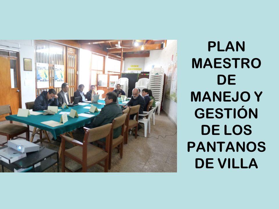 VISIÓN A 2015 Pantanos de Villa es un humedal de gestión modelo para los Sitios Ramsar y para el manejo sostenible, concertado y participativo de las Áreas Naturales Protegidas del Perú, que es objeto privilegiado de investigación científica y de uso social duradero, que garantizan la conservación de sus cuerpos de agua y de su biodiversidad.