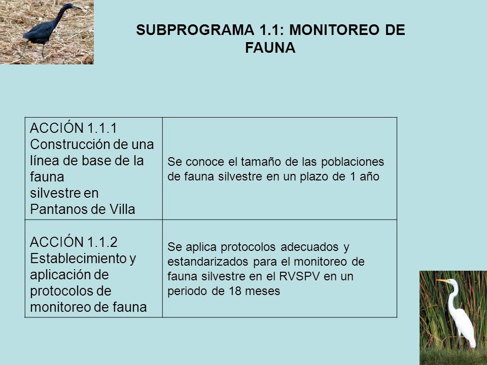 SUBPROGRAMA 1.1: MONITOREO DE FAUNA ACCIÓN 1.1.1 Construcción de una línea de base de la fauna silvestre en Pantanos de Villa Se conoce el tamaño de l