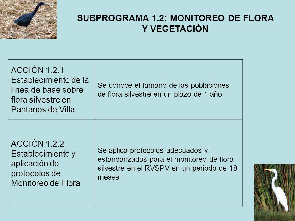SUBPROGRAMA 1.2: MONITOREO DE FLORA Y VEGETACIÓN ACCIÓN 1.2.1 Establecimiento de la línea de base sobre flora silvestre en Pantanos de Villa Se conoce