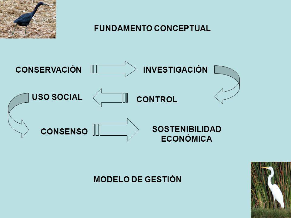 SUBPROGRAMA 1.5: CALIDAD DEL SUELO ACCIÓN 1.5.1 Identificación y clasificación de los suelos Se determina la magnitud de las áreas actuales del área natural y su Zona de Amortiguamiento, clasificando los suelos de acuerdo a sus usos en el primer semestre de ejecución del Plan ACCION 1.5.2 Conservación de los suelos de acuerdo a su importancia para la biodiversidad Se restringe el ingreso a las áreas intangibles del RVSPV a todo elemento alógeno, desde el inicio del Plan