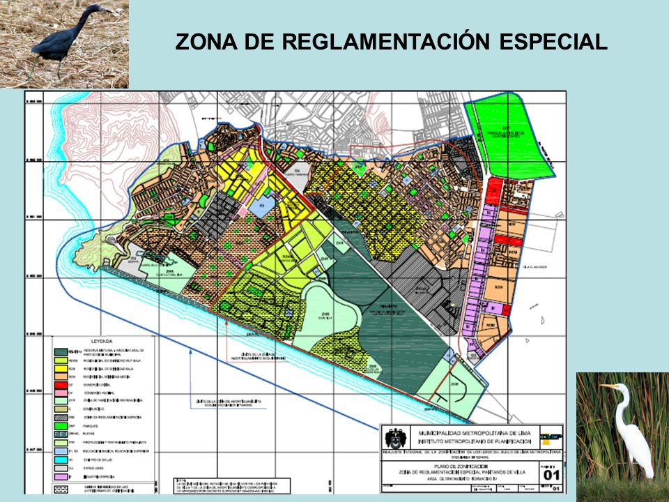 PLAN DE EMERGENCIA Acuerdo definitivo entre la Municipalidad de Lima y Sernanp Recuperación de los niveles de los cuerpos de agua Construcción de una línea de base sobre biodiversidad Inversión en servicios de objeto académico Inversión en infraestructura y servicios turísticos Convenios de soporte para seguridad y otros servicios