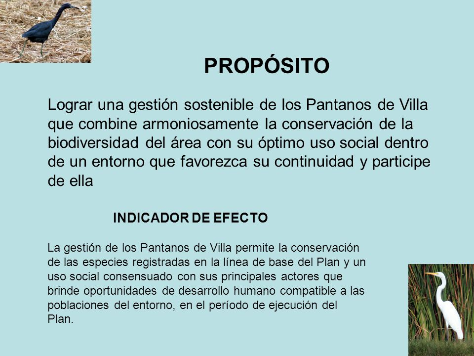 PROPÓSITO Lograr una gestión sostenible de los Pantanos de Villa que combine armoniosamente la conservación de la biodiversidad del área con su óptimo