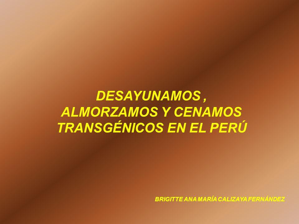 DESAYUNAMOS, ALMORZAMOS Y CENAMOS TRANSGÉNICOS EN EL PERÚ BRIGITTE ANA MARÍA CALIZAYA FERNÁNDEZ