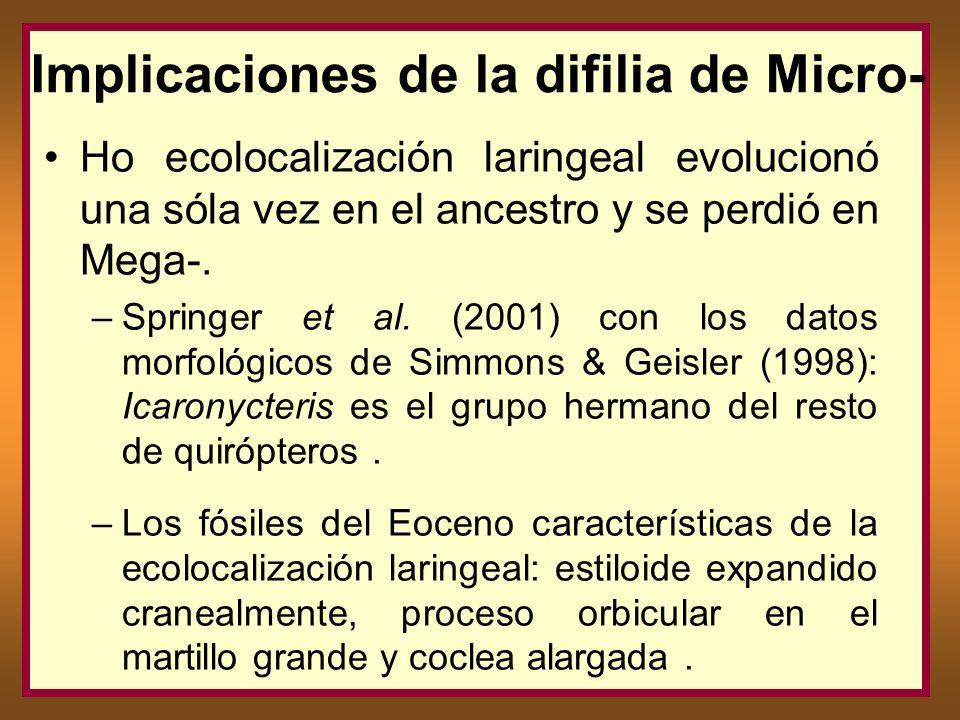 Implicaciones de la difilia de Micro- Ho ecolocalización laringeal evolucionó una sóla vez en el ancestro y se perdió en Mega-. –Springer et al. (2001