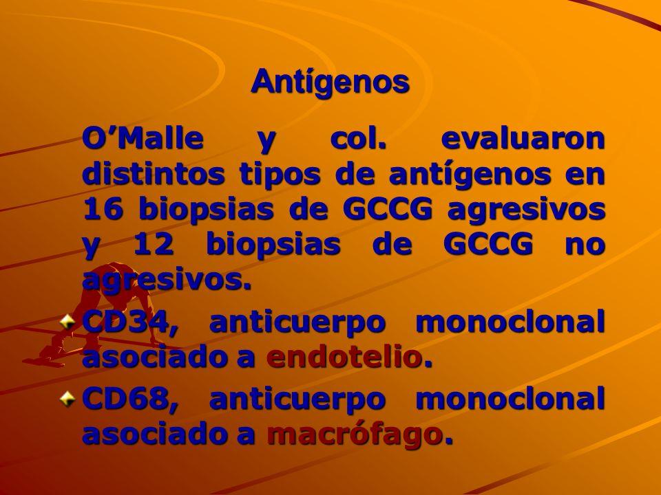 Antígenos OMalle y col. evaluaron distintos tipos de antígenos en 16 biopsias de GCCG agresivos y 12 biopsias de GCCG no agresivos. CD34, anticuerpo m
