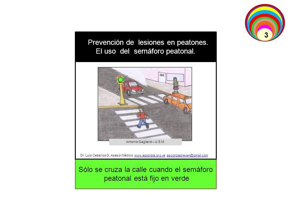 Sólo se cruza la calle cuando el semáforo peatonal está fijo en verde Prevención de lesiones en peatones. El uso del semáforo peatonal. Dr. Luis Cebal