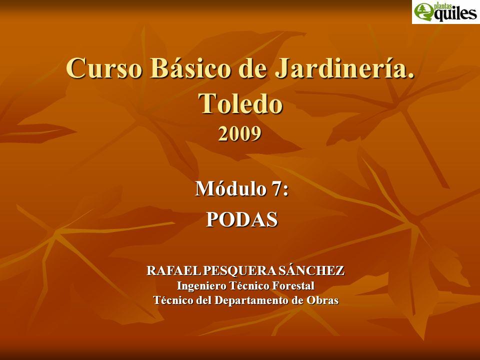 Curso Básico de Jardinería. Toledo 2009 Módulo 7: PODAS RAFAEL PESQUERA SÁNCHEZ Ingeniero Técnico Forestal Técnico del Departamento de Obras