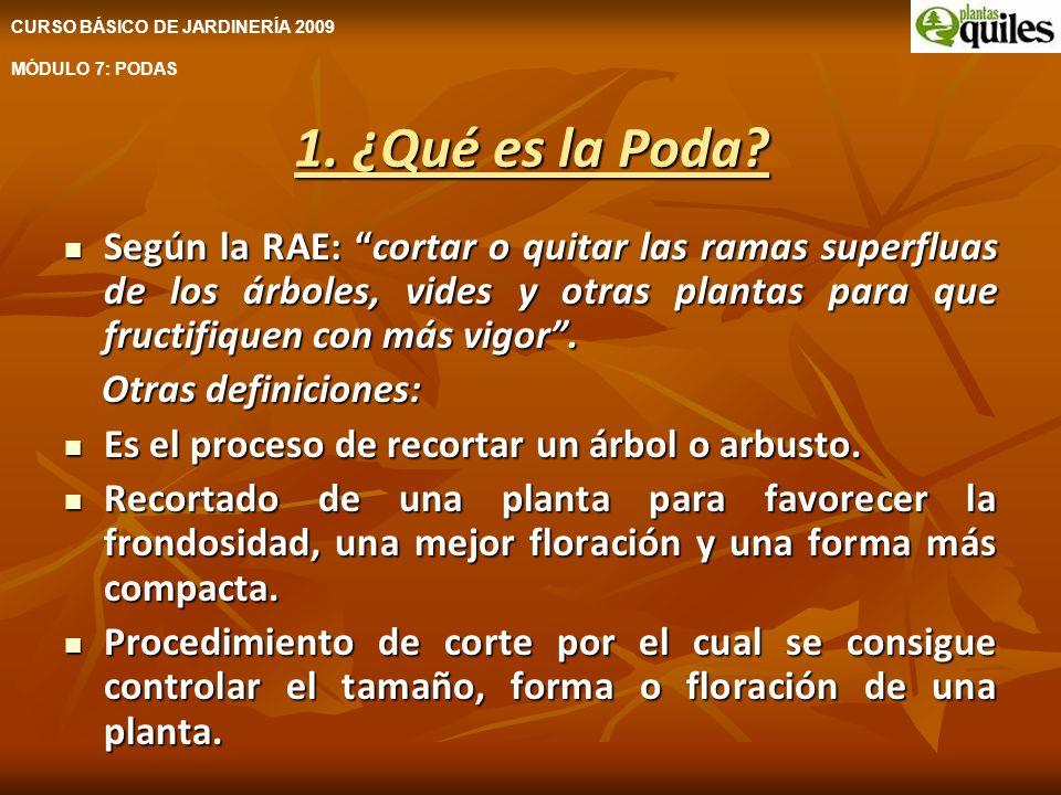 1. ¿Qué es la Poda? Según la RAE: cortar o quitar las ramas superfluas de los árboles, vides y otras plantas para que fructifiquen con más vigor. Segú