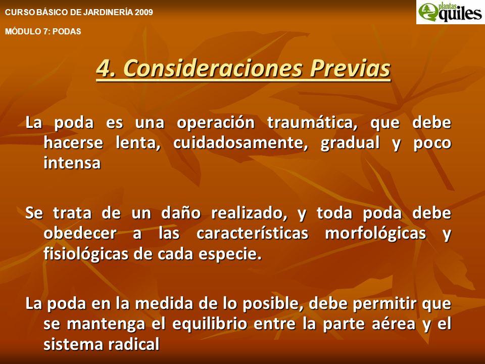 4. Consideraciones Previas La poda es una operación traumática, que debe hacerse lenta, cuidadosamente, gradual y poco intensa Se trata de un daño rea