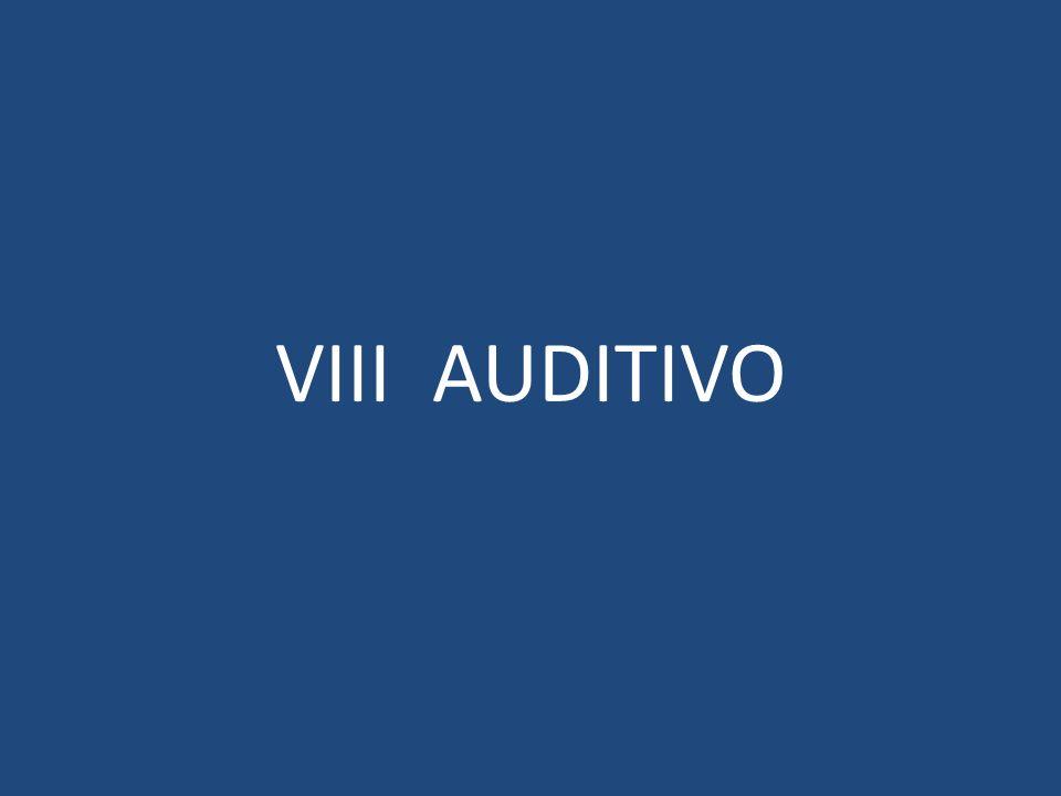 VIII AUDITIVO