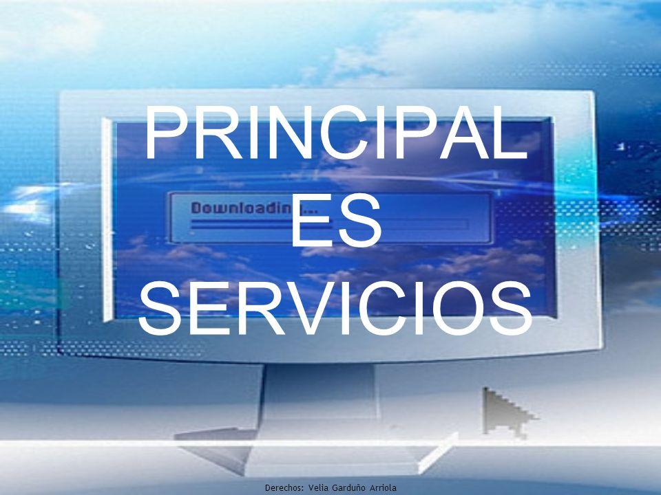 PRINCIPAL ES SERVICIOS Derechos: Velia Garduño Arriola