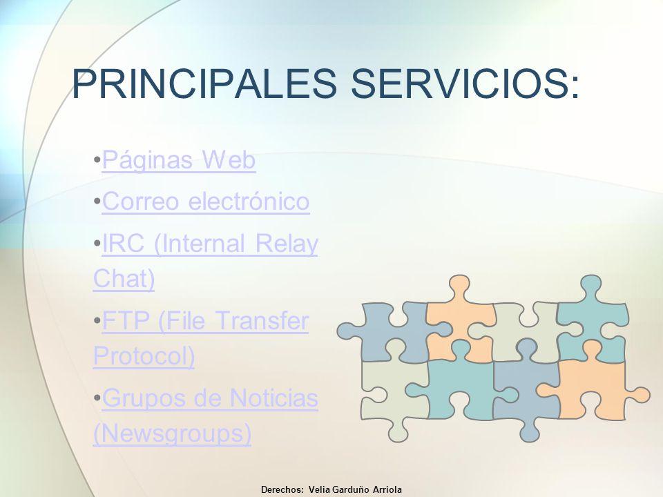 PRINCIPALES SERVICIOS: Páginas Web Correo electrónico IRC (Internal Relay Chat)IRC (Internal Relay Chat) FTP (File Transfer Protocol)FTP (File Transfe