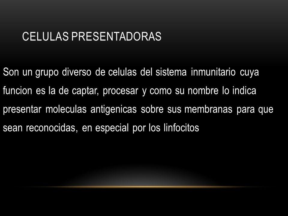 CELULAS PRESENTADORAS Son un grupo diverso de celulas del sistema inmunitario cuya funcion es la de captar, procesar y como su nombre lo indica presen