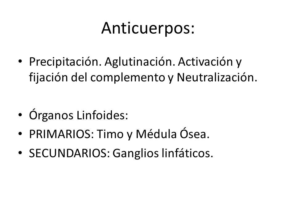 Anticuerpos: Precipitación.Aglutinación. Activación y fijación del complemento y Neutralización.