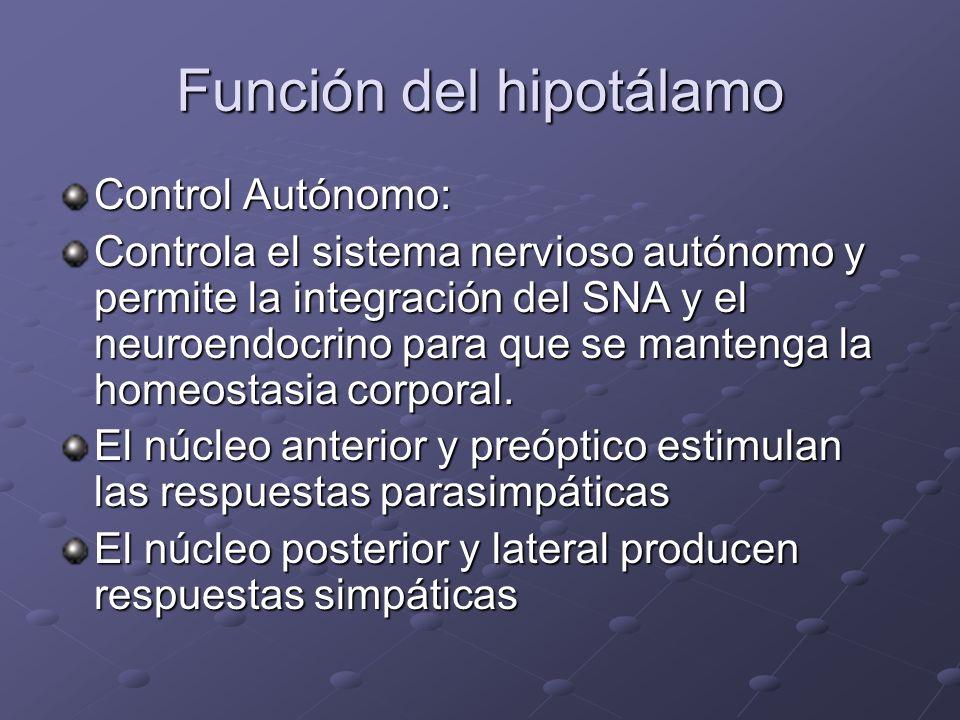 Función del hipotálamo Control Autónomo: Controla el sistema nervioso autónomo y permite la integración del SNA y el neuroendocrino para que se manten