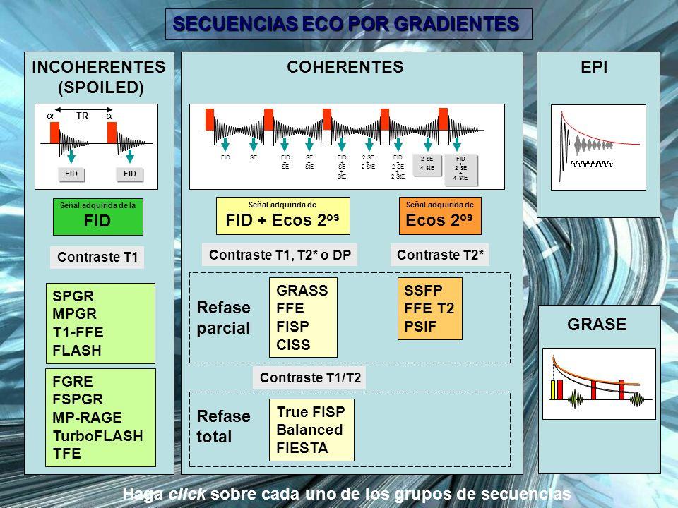 SECUENCIAS ECO POR GRADIENTES La gran ventaja de las secuencias EG es la reducción del tiempo de adquisición, especialmente útil para estudios dinámicos, en apnea, y estudios 3D.