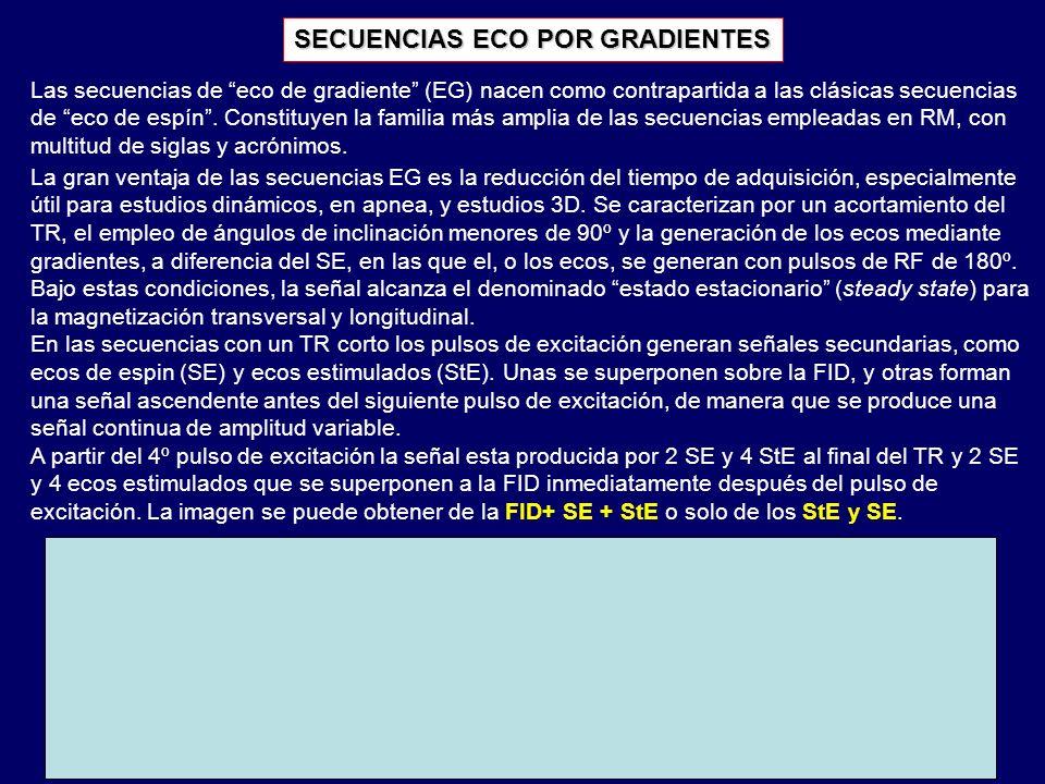 El esquema temporal básico de una secuencia EG muestra el pulso de excitación (α), la FID y el eco.
