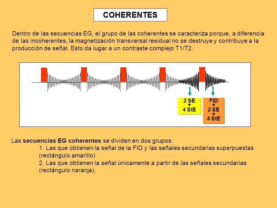 COHERENTES: FID + Eco 2 SE + 4 StE FID + 2 SE + 4 StE Este grupo de secuencias coherentes obtiene la imagen de la señal de la FID y de los ecos secundarios superpuestos.