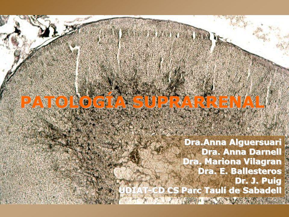 PATOLOGÍA SUPRARRENAL Dra.Anna Alguersuari Dra. Anna Darnell Dra. Mariona Vilagran Dra. E. Ballesteros Dr. J. Puig UDIAT-CD CS Parc Taulí de Sabadell