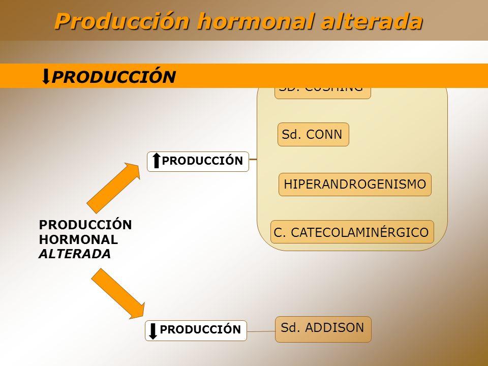 Producción hormonal alterada PRODUCCIÓN HORMONAL ALTERADA PRODUCCIÓN SD. CUSHING C. CATECOLAMINÉRGICO Sd. CONN HIPERANDROGENISMO Sd. ADDISON PRODUCCIÓ