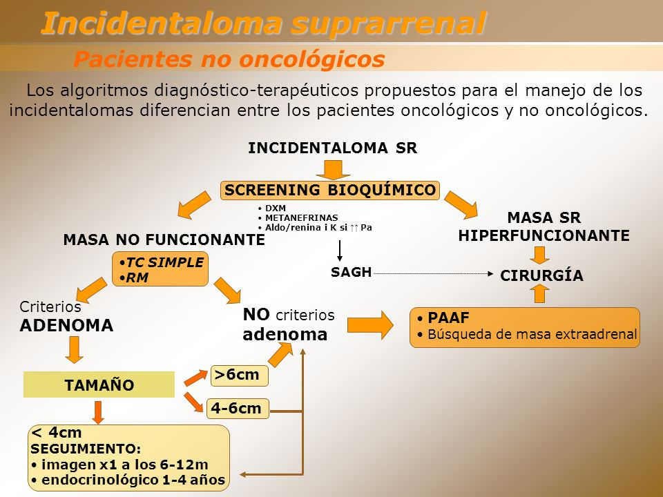 TC SIMPLE RM Pacientes no oncológicos INCIDENTALOMA SR SCREENING BIOQUÍMICO DXM METANEFRINAS Aldo/renina i K si Pa MASA SR HIPERFUNCIONANTE MASA NO FU