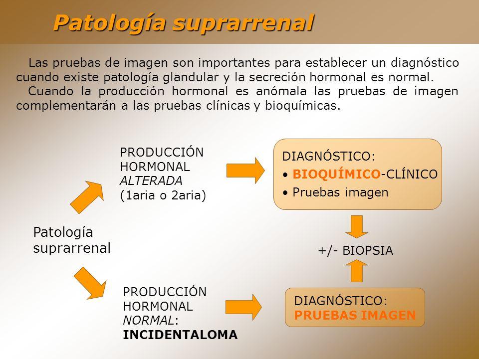 DIAGNÓSTICO: BIOQUÍMICO-CLÍNICO Pruebas imagen Patología suprarrenal PRODUCCIÓN HORMONAL ALTERADA (1aria o 2aria) PRODUCCIÓN HORMONAL NORMAL: INCIDENT