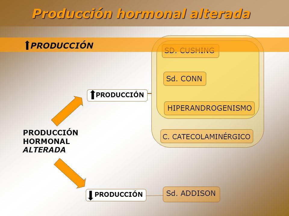 SD. CUSHING C. CATECOLAMINÉRGICO Sd. CONN HIPERANDROGENISMO Producción hormonal alterada PRODUCCIÓN HORMONAL ALTERADA PRODUCCIÓN Sd. ADDISON PRODUCCIÓ