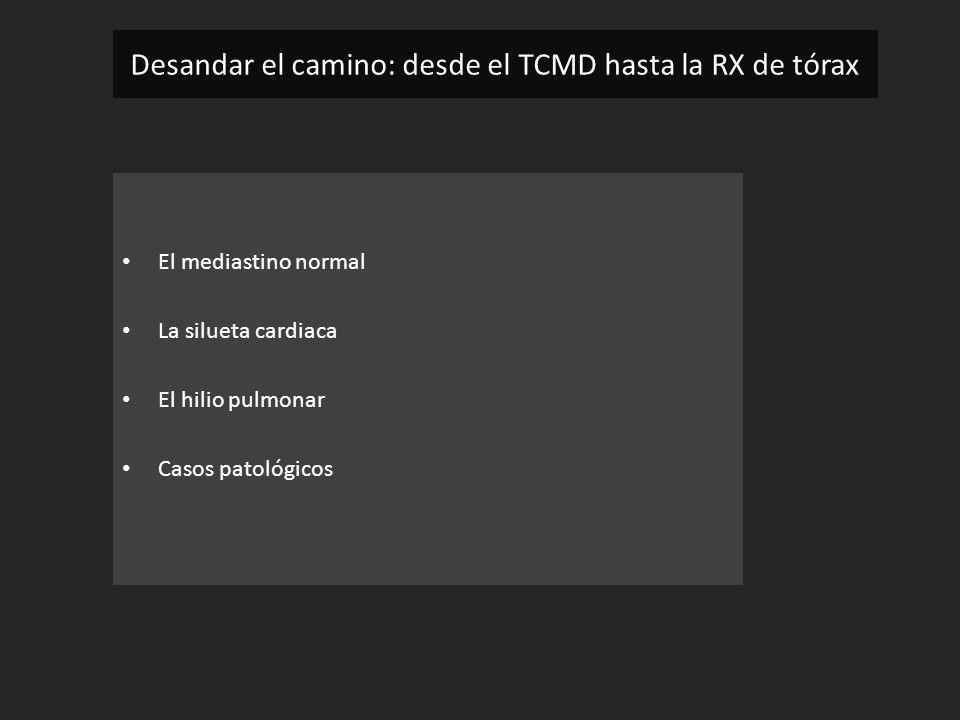 El mediastino normal La silueta cardiaca El hilio pulmonar Casos patológicos Desandar el camino: desde el TCMD hasta la RX de tórax