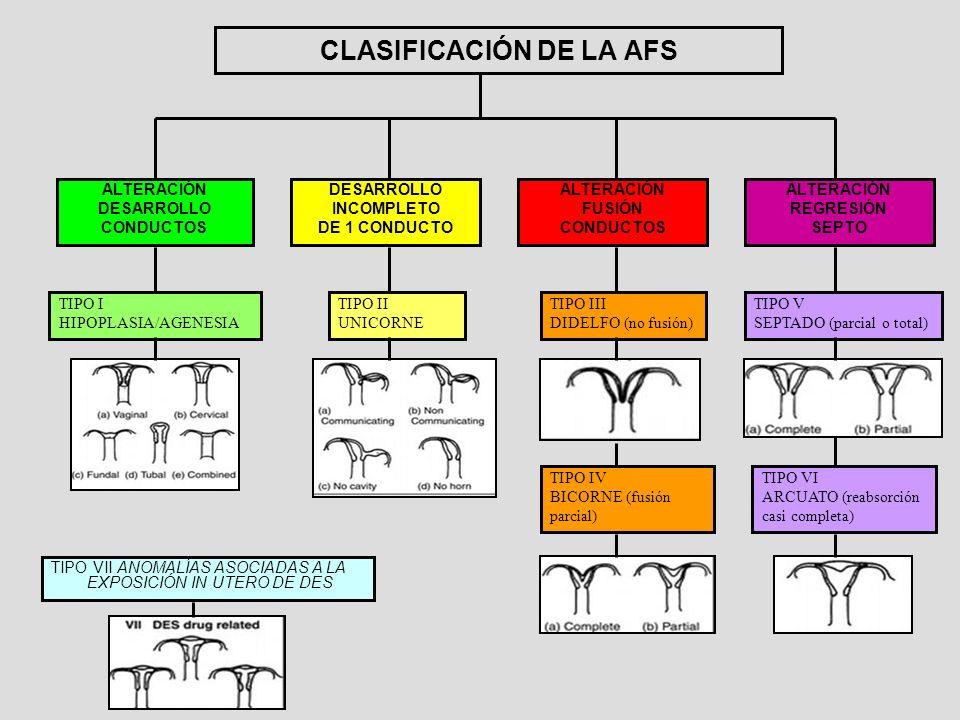 CLASIFICACIÓN DE LA AFS ALTERACIÓN DESARROLLO CONDUCTOS DESARROLLO INCOMPLETO DE 1 CONDUCTO ALTERACIÓN FUSIÓN CONDUCTOS ALTERACIÓN REGRESIÓN SEPTO TIP