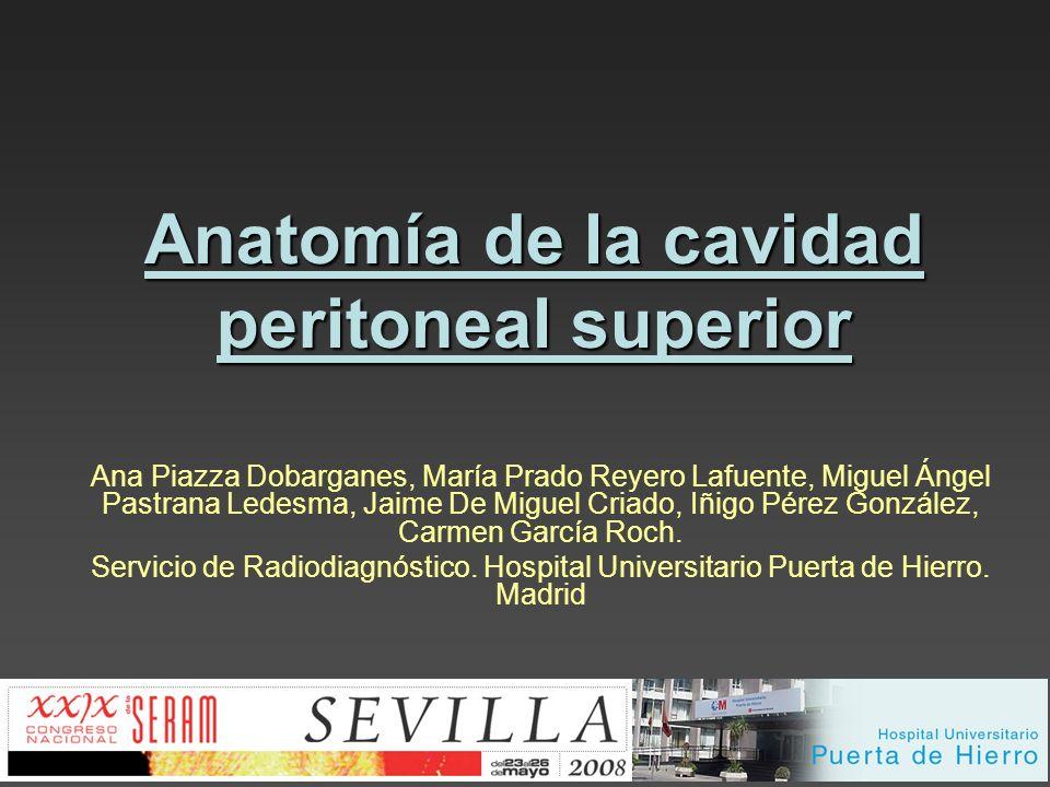 Anatomía de la cavidad peritoneal superior Ana Piazza Dobarganes, María Prado Reyero Lafuente, Miguel Ángel Pastrana Ledesma, Jaime De Miguel Criado,