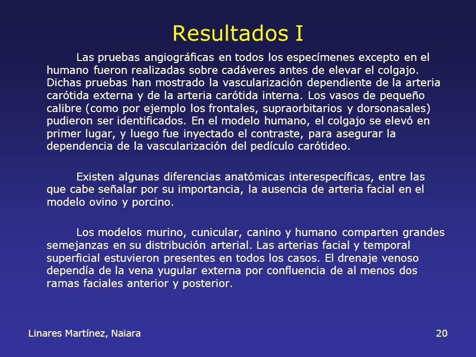 Linares Martínez, Naiara20 Resultados I Las pruebas angiográficas en todos los especímenes excepto en el humano fueron realizadas sobre cadáveres ante