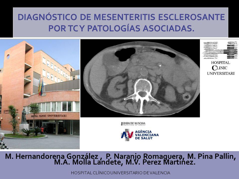 Los tumores y pseudotumores mesentéricos son entidades de difícil valoración radiológica.