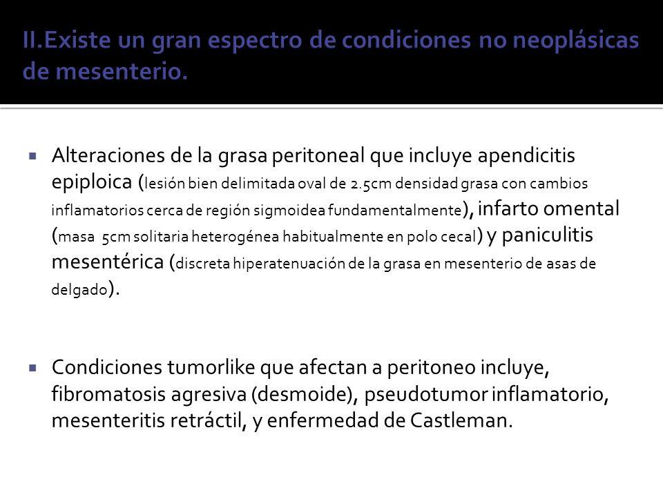 Alteraciones de la grasa peritoneal que incluye apendicitis epiploica ( lesión bien delimitada oval de 2.5cm densidad grasa con cambios inflamatorios