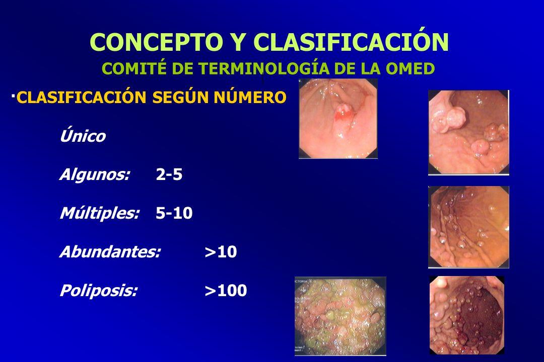 POLIPECTOMÍA: COMPLICACIONES ·Hemorragia (1-2%) Riesgo: Pólipos sesiles de gran tamaño /gran pedículo Aparición: Precoz / A la semana PREVENCIÓN DEL SANGRADO POST-POLIPECTOMÍA