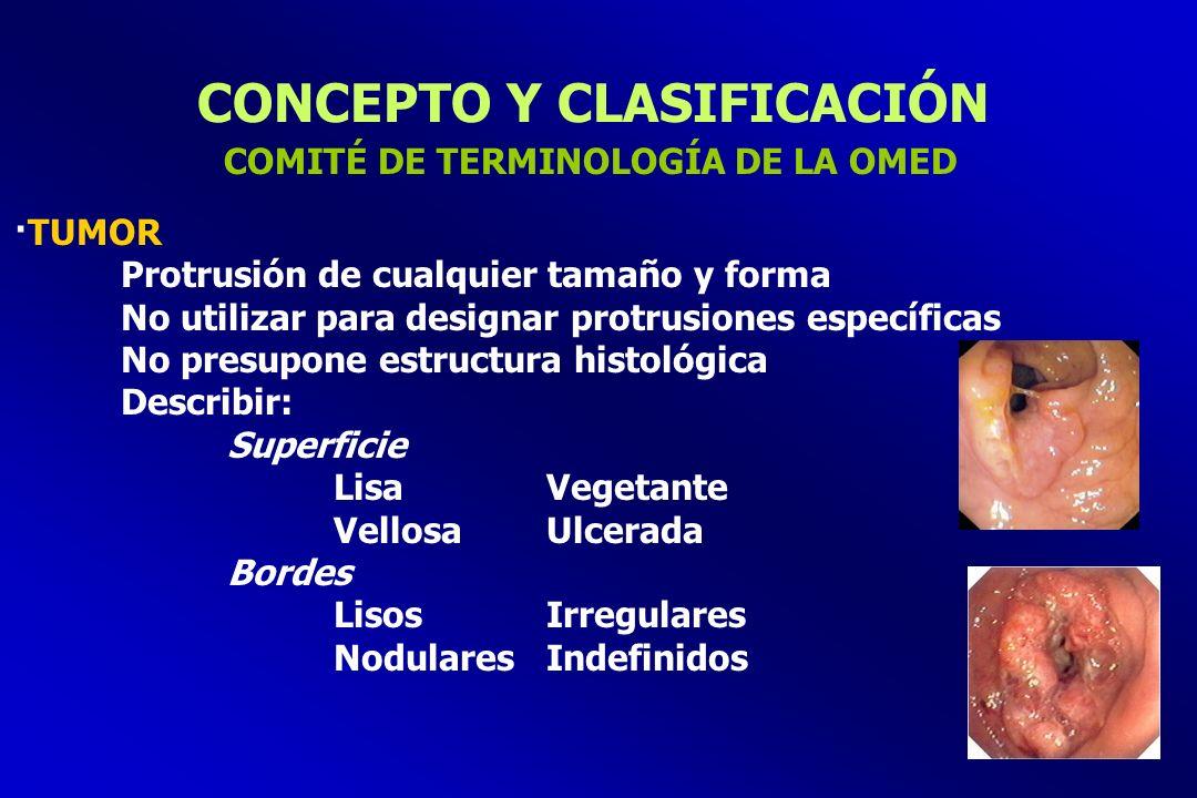 CONCEPTO Y CLASIFICACIÓN ·TUMOR Protrusión de cualquier tamaño y forma No utilizar para designar protrusiones específicas No presupone estructura hist