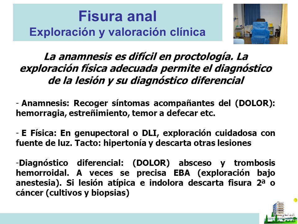 Fisura anal Exploración y valoración clínica La anamnesis es difícil en proctología. La exploración física adecuada permite el diagnóstico de la lesió