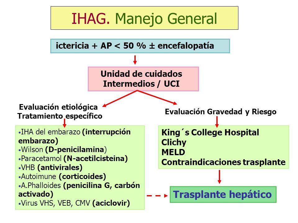 Unidad de cuidados Intermedios / UCI Evaluación etiológica Tratamiento específico Evaluación Gravedad y Riesgo IHA del embarazo (interrupción embarazo