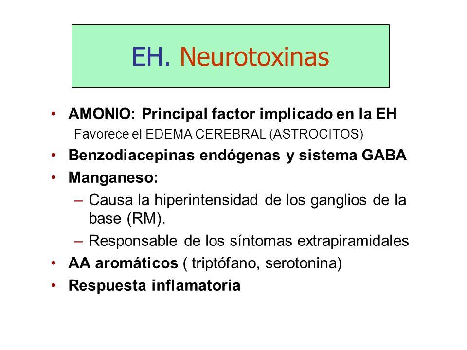 EH. Neurotoxinas AMONIO: Principal factor implicado en la EH Favorece el EDEMA CEREBRAL (ASTROCITOS) Benzodiacepinas endógenas y sistema GABA Manganes