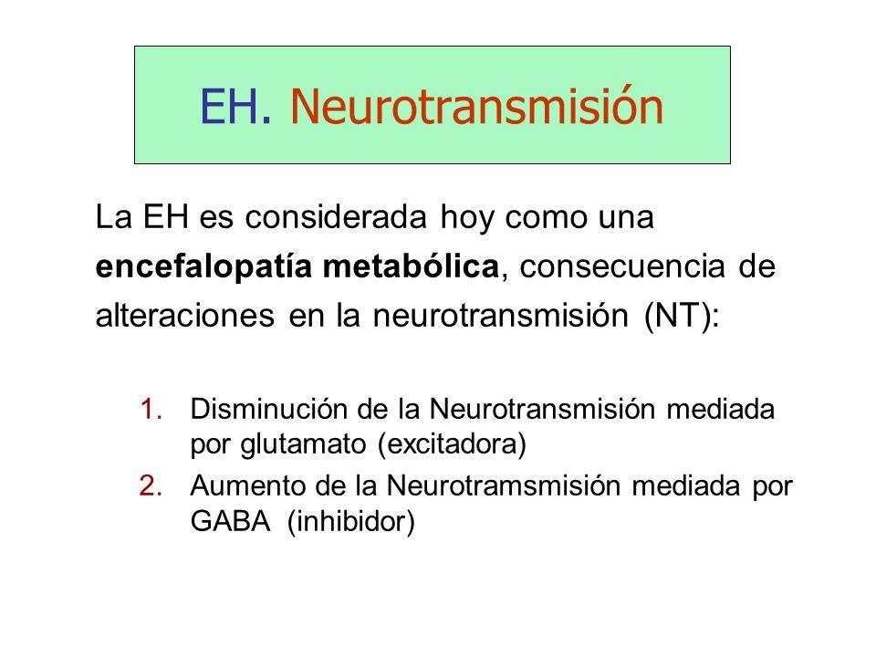 EH. Neurotransmisión La EH es considerada hoy como una encefalopatía metabólica, consecuencia de alteraciones en la neurotransmisión (NT): 1.Disminuci