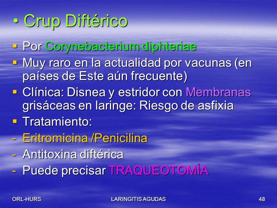 ORL-HURSLARINGITIS AGUDAS48 Crup Diftérico Crup Diftérico Por Corynebacterium diphteriae Por Corynebacterium diphteriae Muy raro en la actualidad por vacunas (en países de Este aún frecuente) Muy raro en la actualidad por vacunas (en países de Este aún frecuente) Clínica: Disnea y estridor con Membranas grisáceas en laringe: Riesgo de asfixia Clínica: Disnea y estridor con Membranas grisáceas en laringe: Riesgo de asfixia Tratamiento: Tratamiento: -Eritromicina /Penicilina -Antitoxina diftérica -Puede precisar TRAQUEOTOMÍA