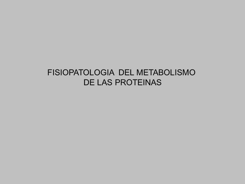 FISIOPATOLOGIA DEL METABOLISMO DE LAS PROTEINAS