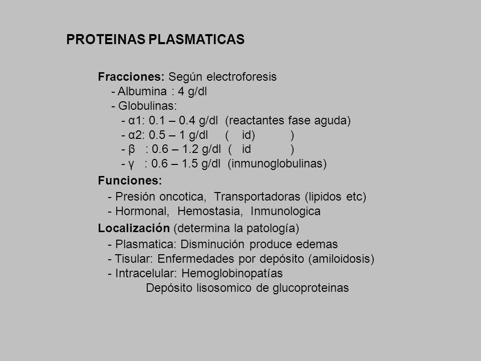 PROTEINAS PLASMATICAS Fracciones: Según electroforesis - Albumina : 4 g/dl - Globulinas: - α1: 0.1 – 0.4 g/dl (reactantes fase aguda) - α2: 0.5 – 1 g/