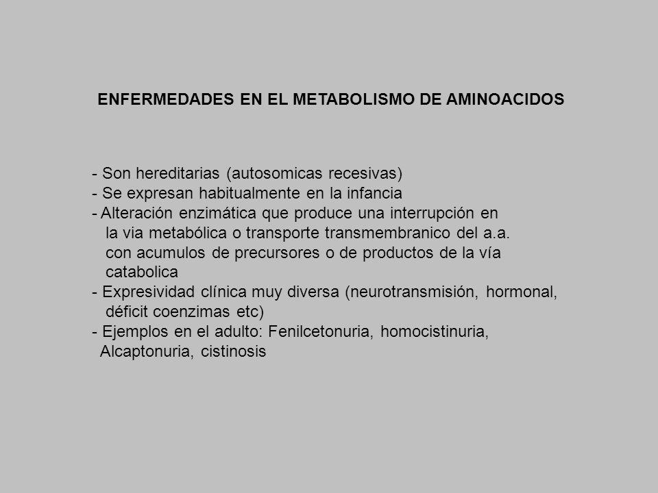 ENFERMEDADES EN EL METABOLISMO DE AMINOACIDOS - Son hereditarias (autosomicas recesivas) - Se expresan habitualmente en la infancia - Alteración enzim