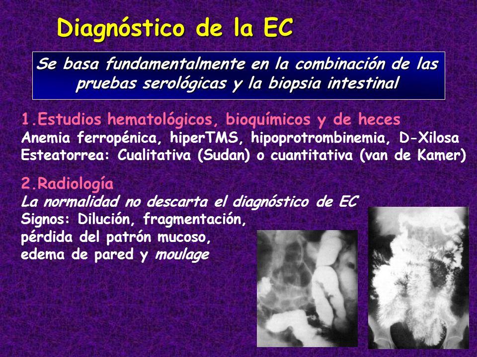 Diagnóstico de la EC Se basa fundamentalmente en la combinación de las pruebas serológicas y la biopsia intestinal 1.Estudios hematológicos, bioquímic